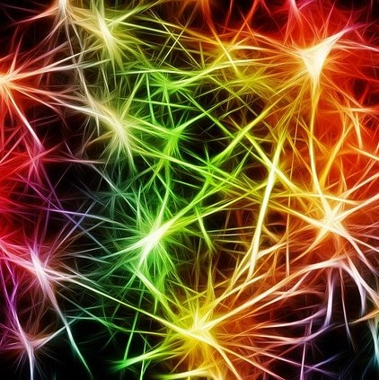 Conselho Federal de Medicina Altera Regras para Determinar Morte Cerebral